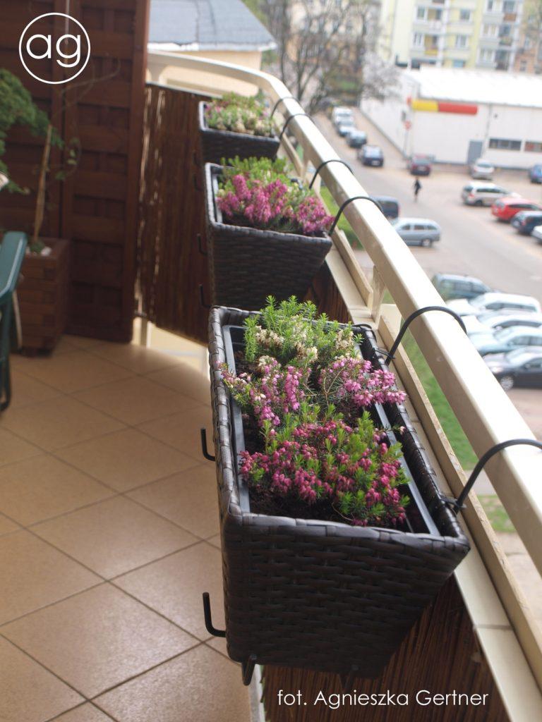 balkon wToruniu, agnieszkagertnerblog,, agnieszka gertner, porealizacji, aranżacja balkonu