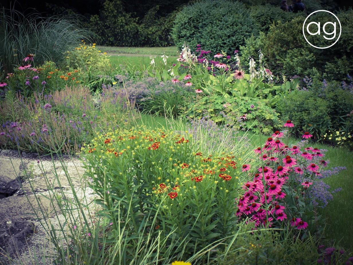 Byliny wogrodzie, książka, czytanie, agnieszkagertnerblog, Agnieszka Gertner, architecture & gardens, perennials