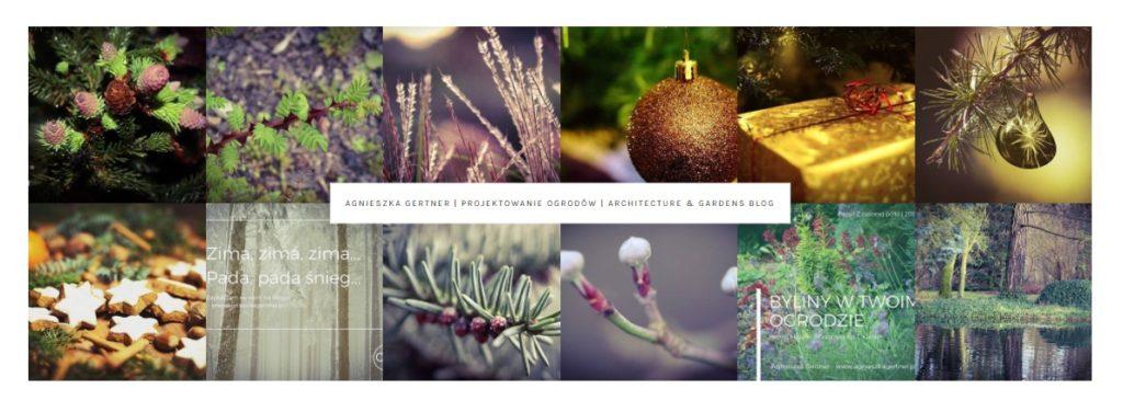 podsumowanie pasji ipracy, live your dream, projektowanie ogrodów, blog, architecture 7 Gardens, agnieszkagertnerblog, Agnieszka Gertner, 2017