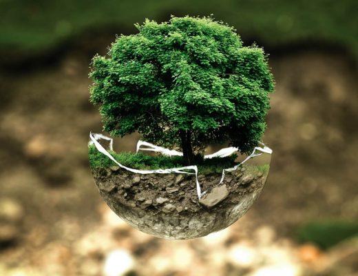 ekologia, krajobraz, zagrożenia, przyroda, antropopresja, ochrona środowiska, agnieszkagertnerblog, Agnieszka Gertner, artykuł naukowy