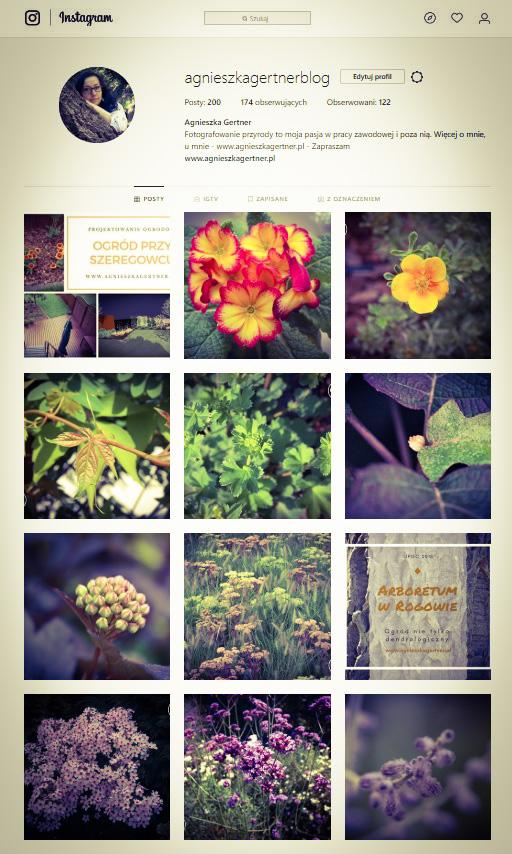 instagram, agnieszkagertnerblog
