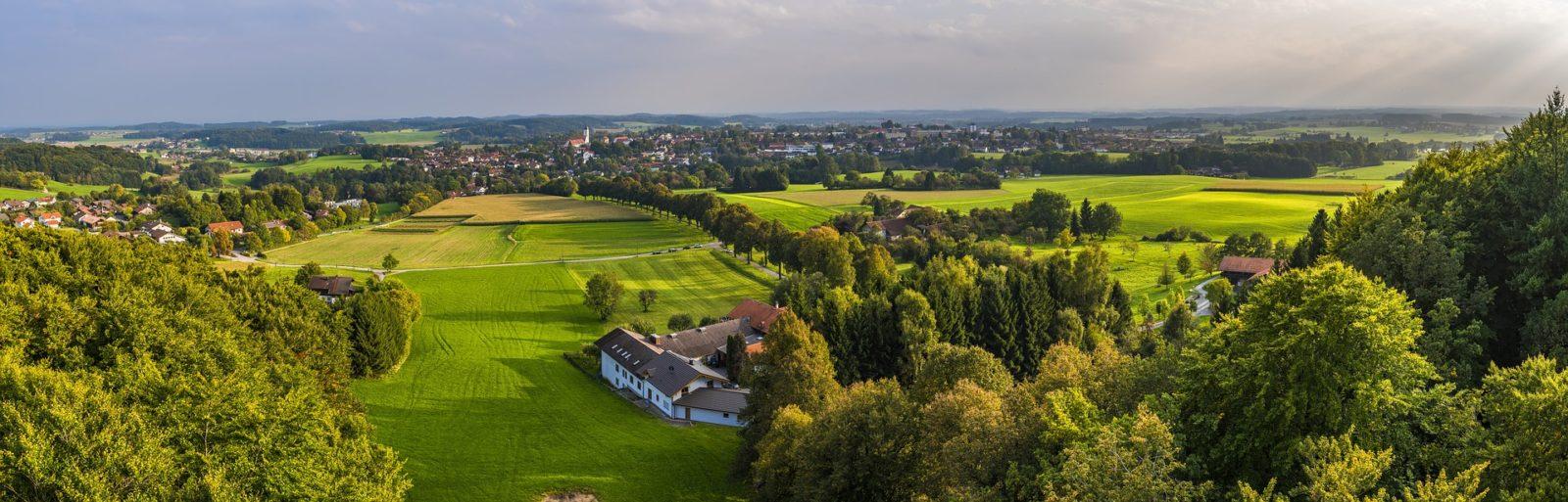 miasto, urbanizacja, tereny zieleni, projektowanie ogrodów, projektowanie przestrzeni, architektura krajobrazu, Agnieszka Gertner, agnieszkagertnerblog