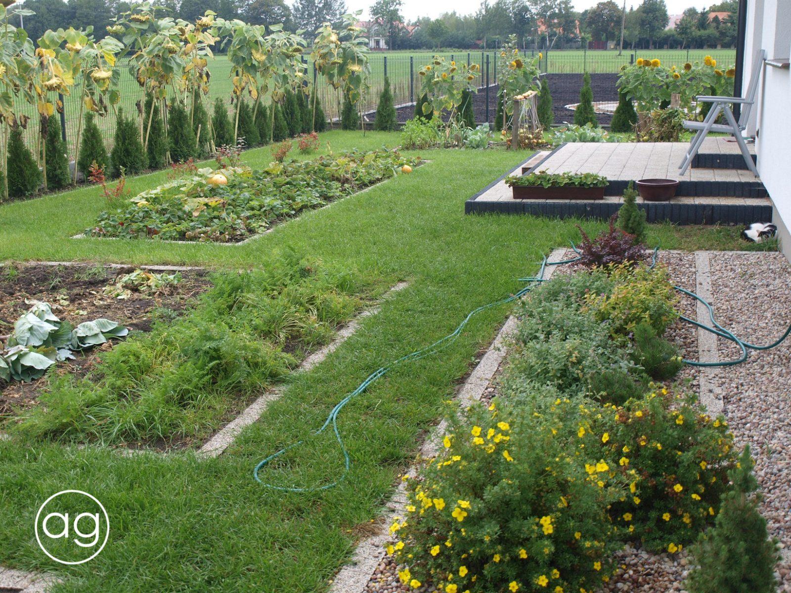 projektowanie ogrodów, ogród wZłotorii, Agnieszka Gertner, agnieszkagertnerblog, trawnik, warzywnik