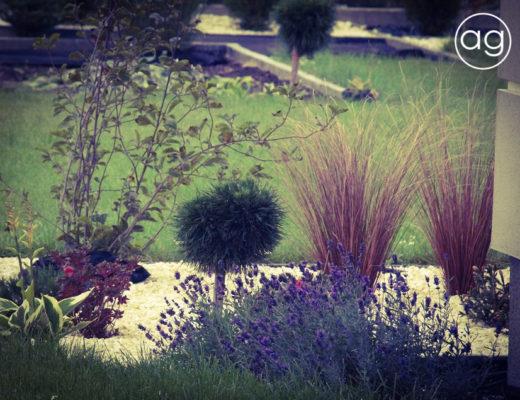 Ogród w Złotorii, projektowanie ogrodów, Agnieszka Gertner, agnieszkagertnerblog, realizacja projektu