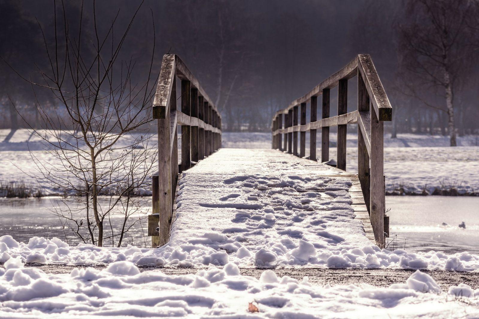 pada śnieg, wiosna, blog, inne, agnieszkagertnerblog, architecture & garden, lato, jesień, zima, Agnieszka Gertner, Przymrozek, szron, białe drzewa