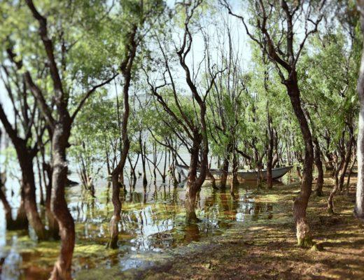 limnologia, krajobraz, jezioro, nauka, woda, badania, agnieszkagertnerblog, Agnieszka Gertner, artykuł naukowy